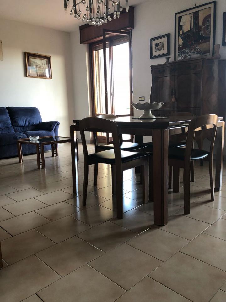 Appartamento in buone condizioni arredato in affitto Rif. 6895715