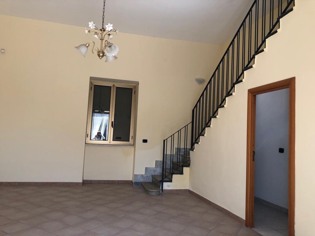 Appartamento in buone condizioni in affitto Rif. 9870467
