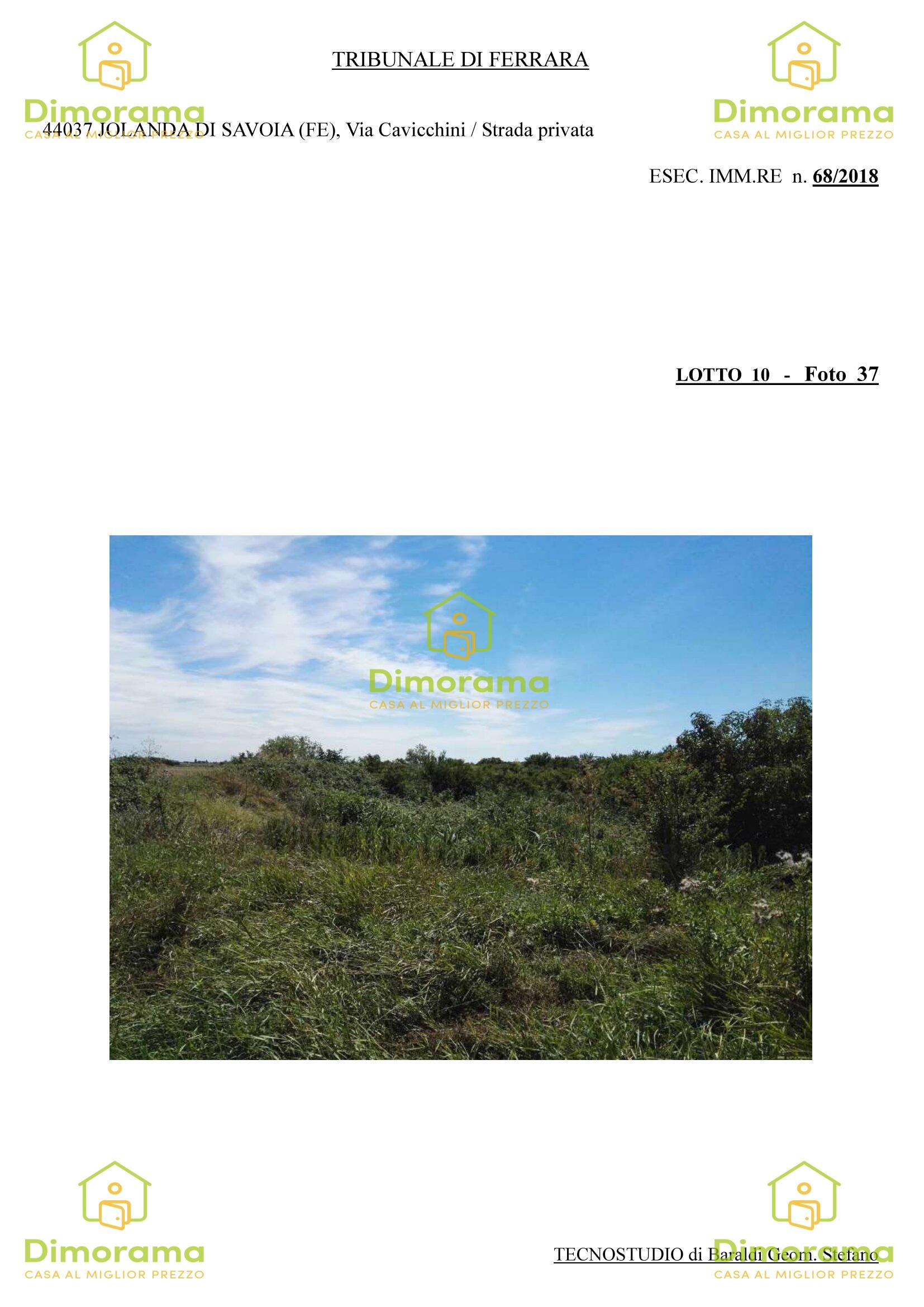 Terreno Agricolo JOLANDA DI SAVOIA FE1247462