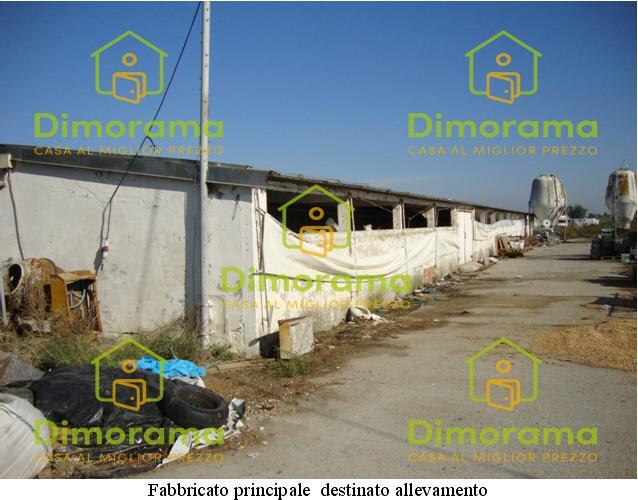 Terreno Commerciale in vendita Rif. 12010700