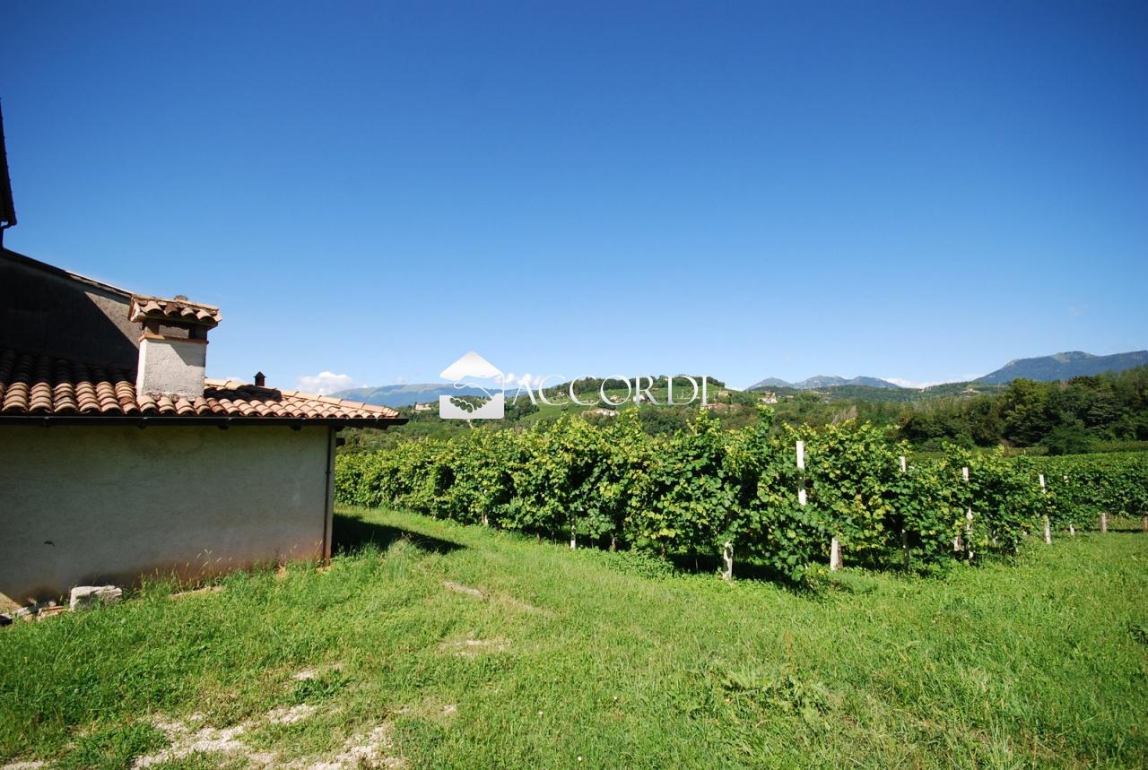 Terreno Agricolo in vendita a San Pietro di Feletto, 9999 locali, Trattative riservate | CambioCasa.it