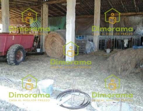 Azienda Agricola in vendita a Gattico, 4 locali, prezzo € 64.394 | PortaleAgenzieImmobiliari.it