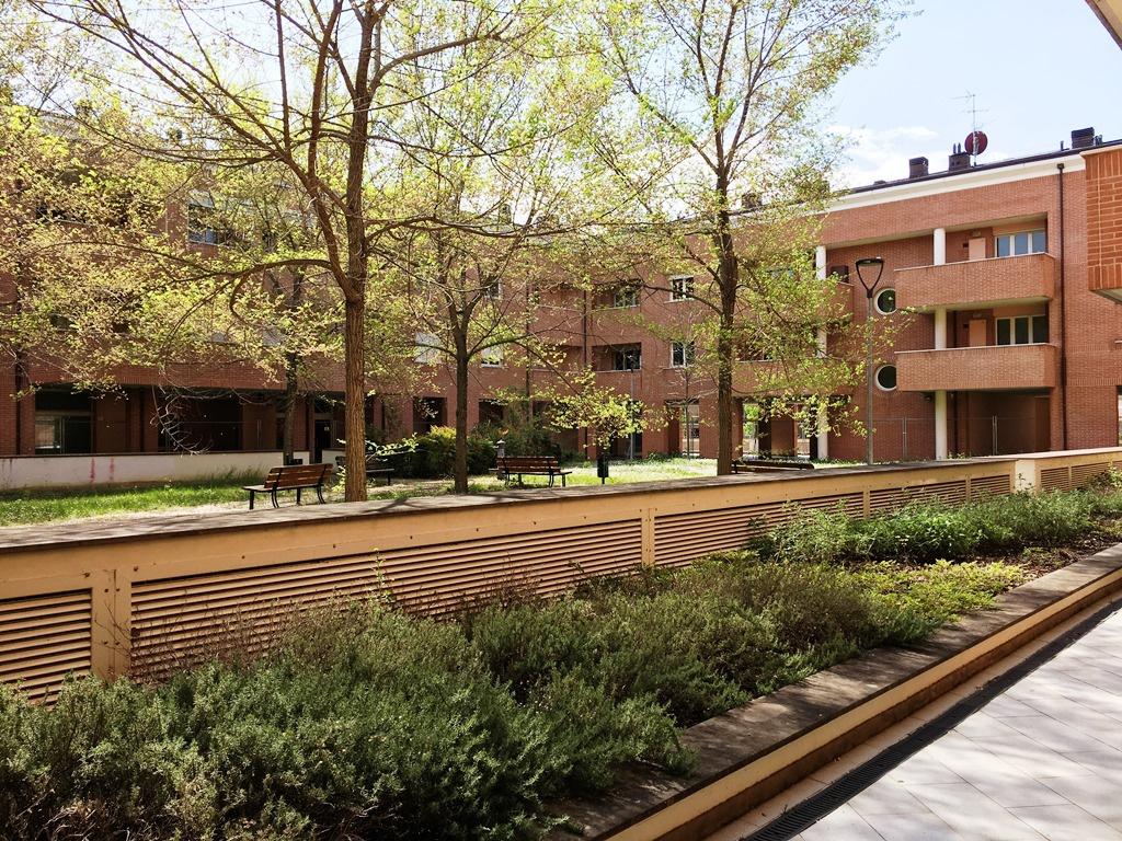 Appartamento in ottime condizioni in affitto Rif. 11656701