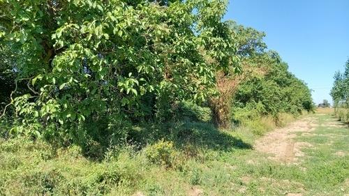 Terreno Agricolo in vendita a Chignolo Po, 9999 locali, prezzo € 8.000 | CambioCasa.it