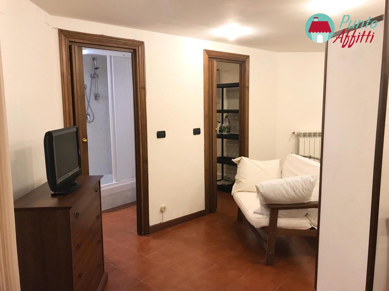Appartamento in buone condizioni in affitto Rif. 11477253