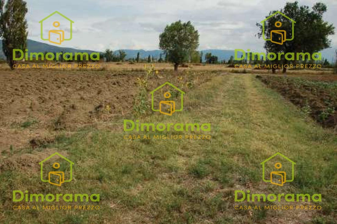 Terreno agricolo in vendita a Assisi (PG)